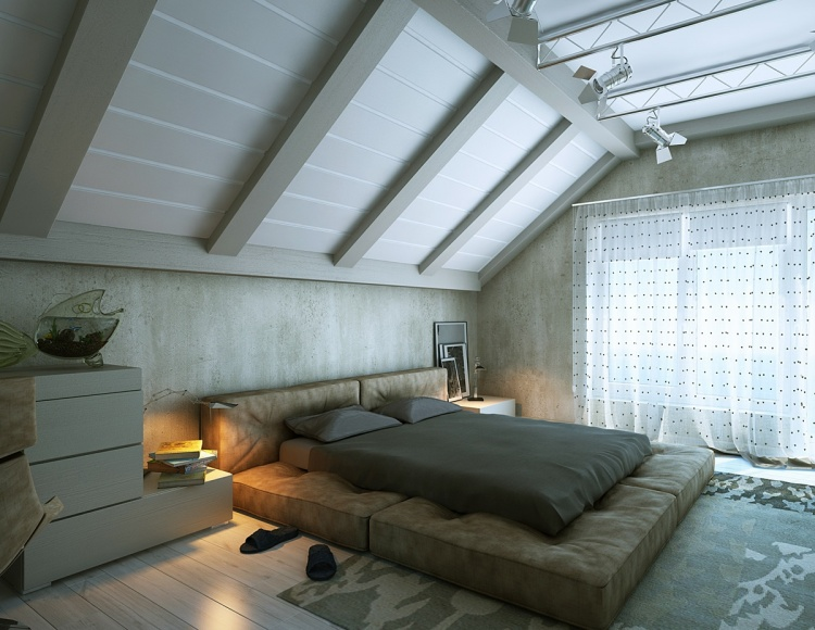Attic Living Spaces