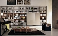 001-contemporary-home-libraries