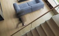 010-house-vienna-sono-arhitekti