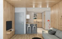 017-apartment-kiev-andrew-skliarov