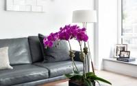 013-riverdale-apartment-touijer-designs