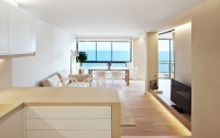 001-contemporary-apartment-barea-partners