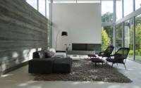 002-tripartite-house-intexure-architects