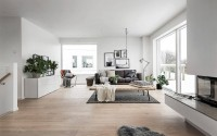 003-house-hgans-scandinavian-homes