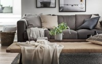 007-house-hgans-scandinavian-homes