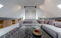 006-attic-apartment-lofting