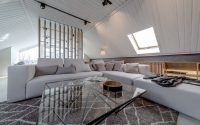 007-attic-apartment-lofting