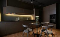 009-vz1h1-apartment-igor-sirotov-architects