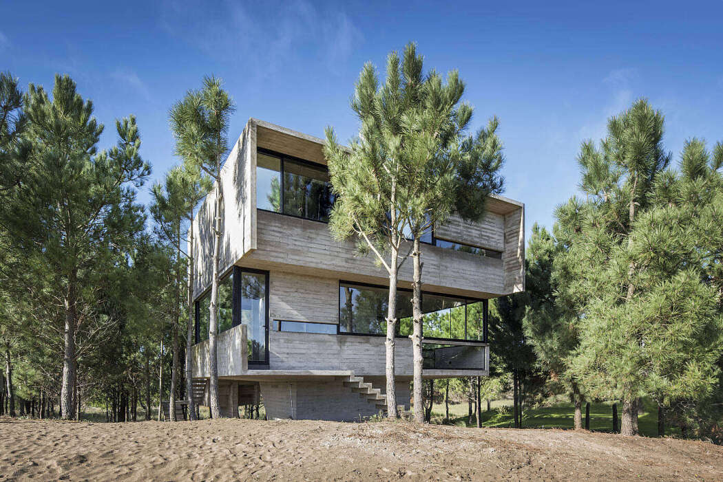 House in the Trees by Luciano Kruk Arquitectos - 1