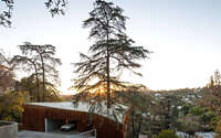 013-house-trees-anonymous-architects